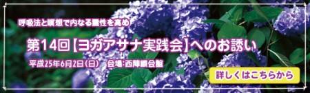 第14回【ヨガアサナ実践会】へのお誘い
