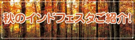 秋のインドフェスタご紹介